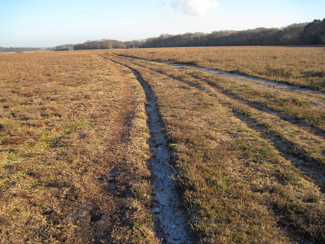 Track towards Decoy Pond Farm
