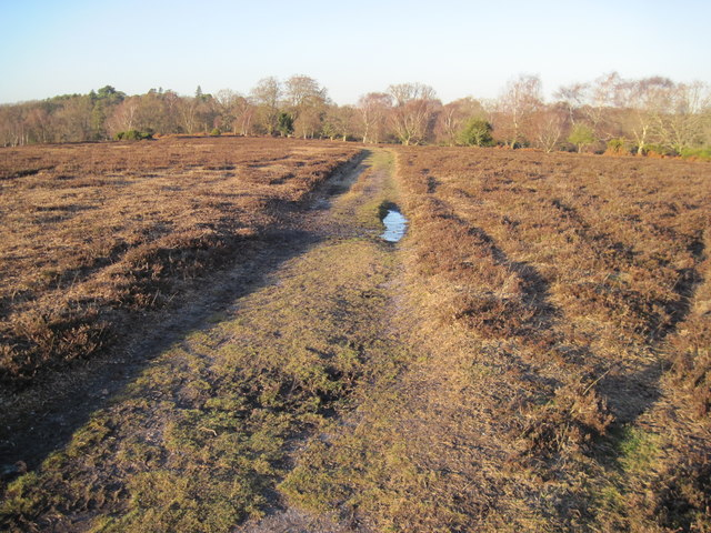 Track on Matley Heath