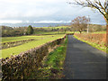 NS2272 : Shielhill Road by Thomas Nugent