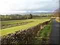NS2272 : Remains of Shielhill Glen Railway by Thomas Nugent