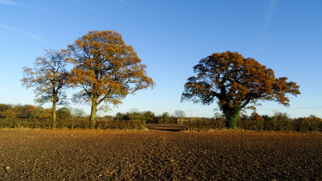 Field path between Raven's Ln & Swanley Ln, Swanley near Nantwich