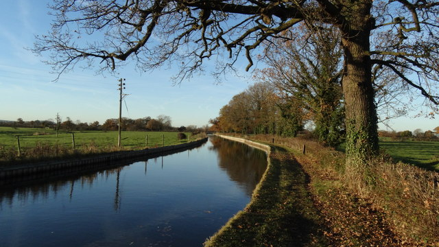 Llangollen Branch of Shropshire Union Canal - N of Platt's Bridge, Burland