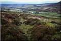 NZ5402 : Upper Raisdale by Mick Garratt