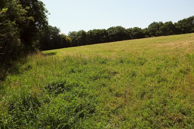 Field near Lower Hill