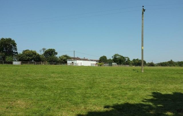 Field, Little Downs