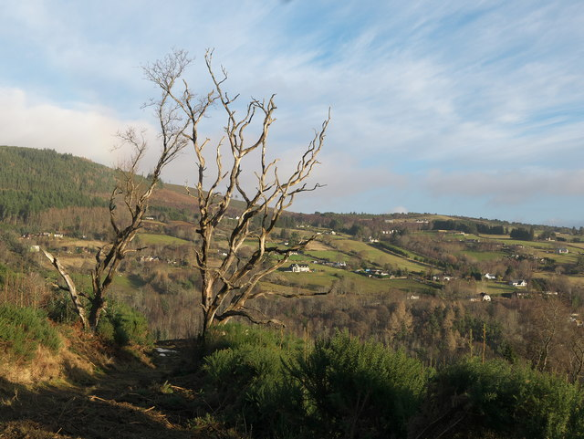 Hillside above Achterneed