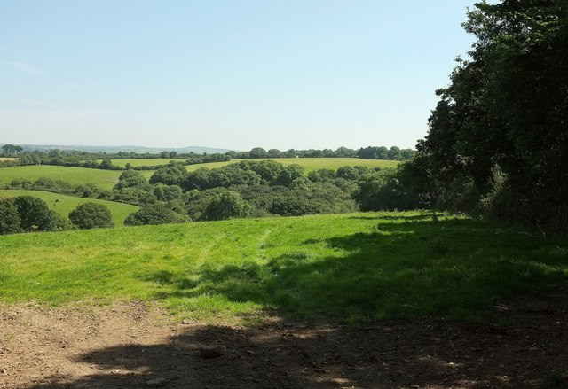 Field and valley near Westside Farm