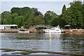 SU7683 : River Thames by N Chadwick