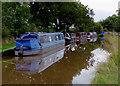 SJ5847 : Moored narrowboats near Wrenbury, Cheshire by Roger  Kidd