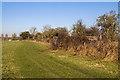 SU1515 : WWII Hampshire - Ringwood Stop Line, Avon Valley - Fordingbridge anti-tank island (30) by Mike Searle