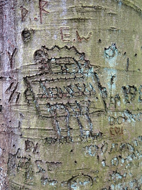 Beech tree graffiti, Close House