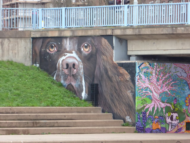 Full color graffiti painted on a cement wall next to some stairs and a patch of grass; graffiti is a dog's face looking out at the viewer