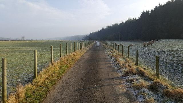 Unthank Road near East Unthank