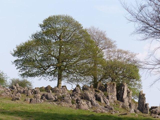 Dolomitic limestone outcrop
