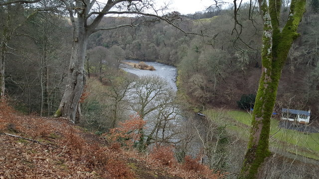 River Tweed near Old Melrose