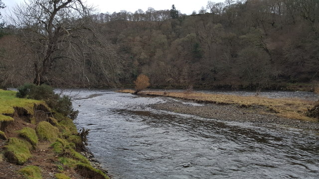 Small island in River Tweed near Old Melrose