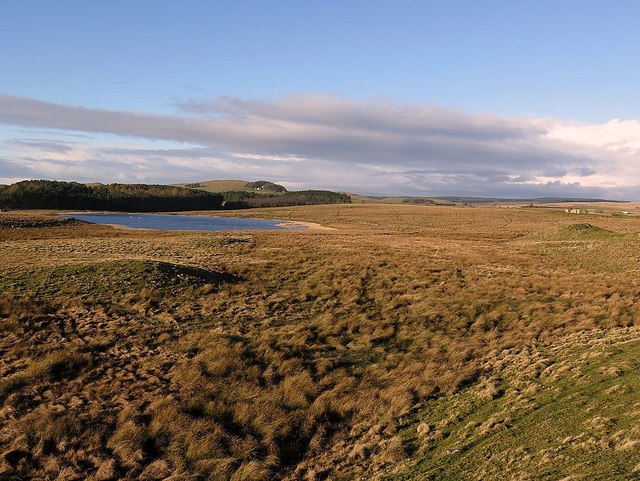 Brown Moor near Shield on the Wall