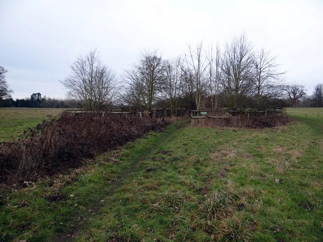 Circular plantation