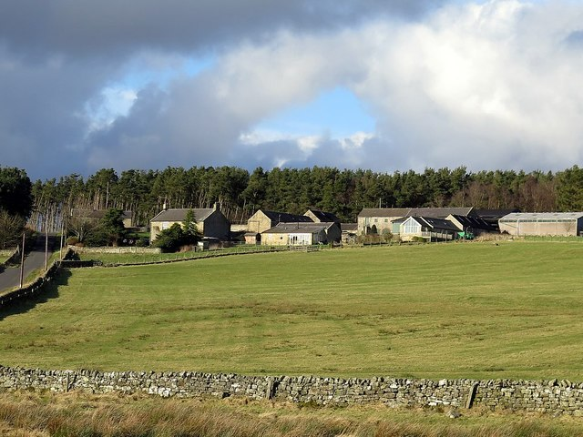 Grindon from the south