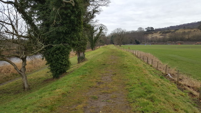 Footpath on top of the levee at Tynedale Park