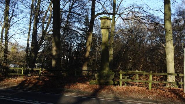 Mottram Cross, Mottram St Andrew