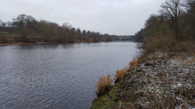 River Tyne at Riding Mill