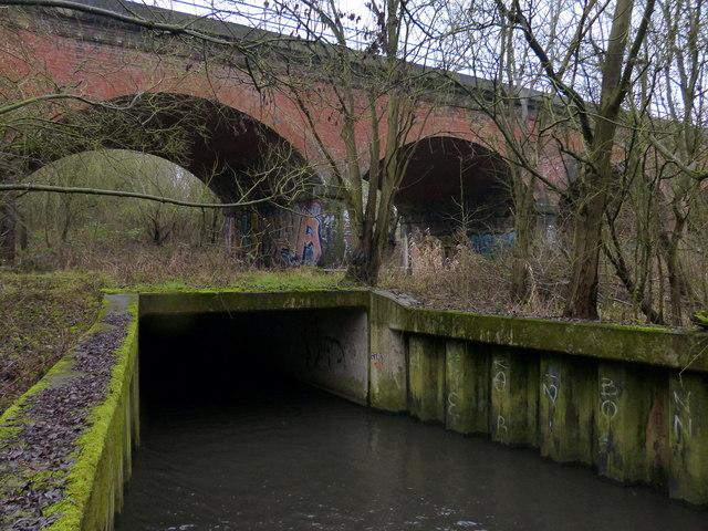 Saffron Brook And The Twelve Arches 169 Mat Fascione Cc