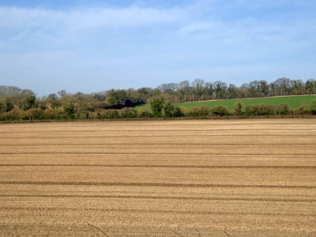 Field north-east of Hursley