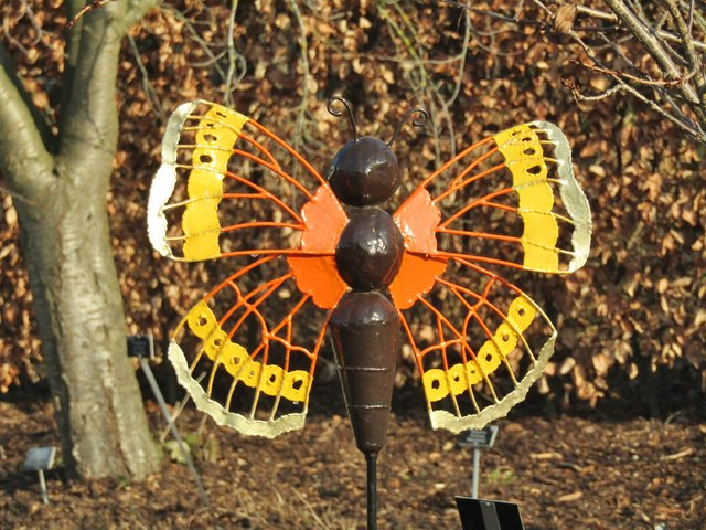 Wisley - Butterfly Model