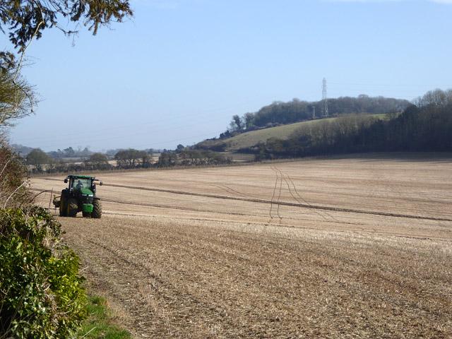 Field east of Port Lane