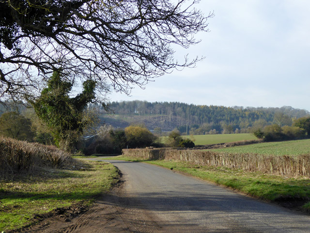 View down Sparsholt Road