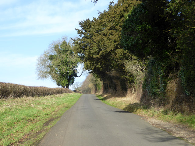 Farley Mount Road