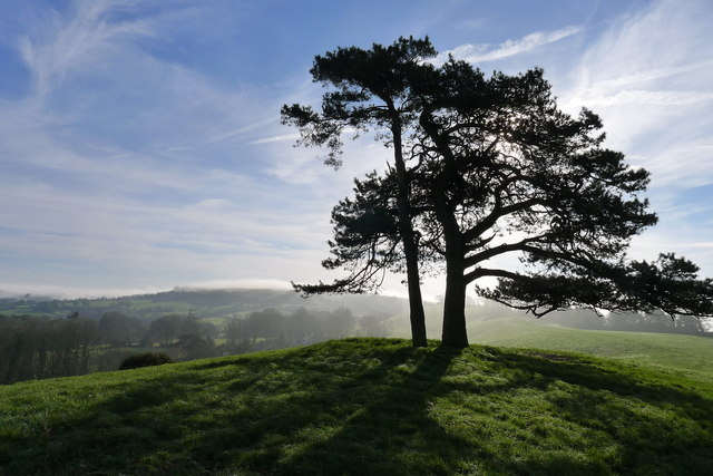 On Blackdown Hill