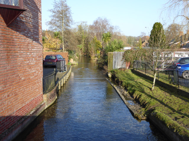 Mill stream, Whitchurch