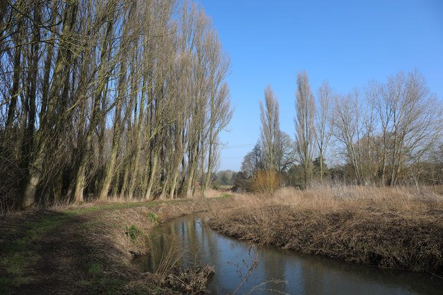 River Lark looking downstream
