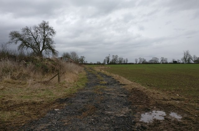 Farm track next to Willoughby Road