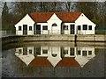 SK9136 : The old swimming pool, Wyndham Park : Week 7