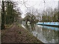 TQ0559 : River Wey by Oast House Archive