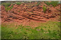 SX9777 : Red Sandstone Cliff by N Chadwick