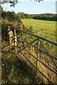 SX0764 : Gate near Kirland Bower by Derek Harper