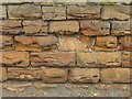 SK5836 : Bench mark, 113 Melton Road, West Bridgford by Alan Murray-Rust