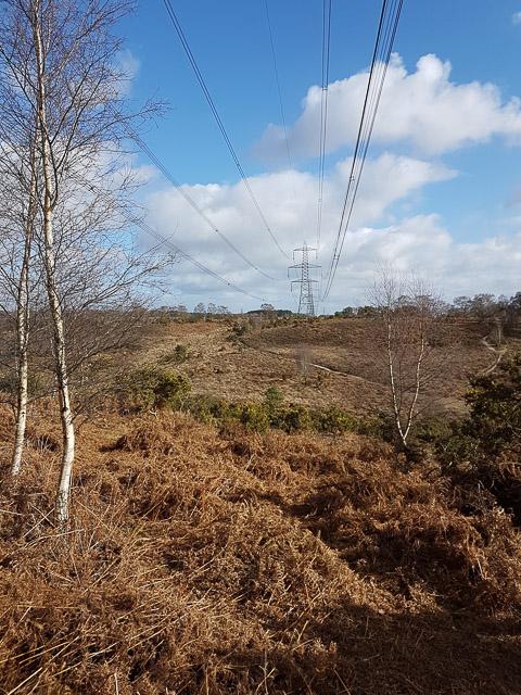 400 KV Electricity lines across Hale Purlieu