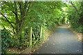 SX9066 : Bridleway near The Willows by Derek Harper