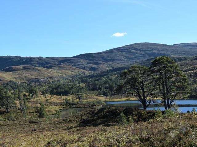 Loch Salach a' Ghiubhais