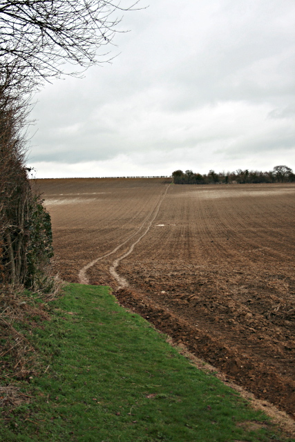 Towards Twitham Hill