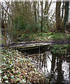 SK5601 : Footbridge and stream on the Aylestone Playing Fields by Mat Fascione