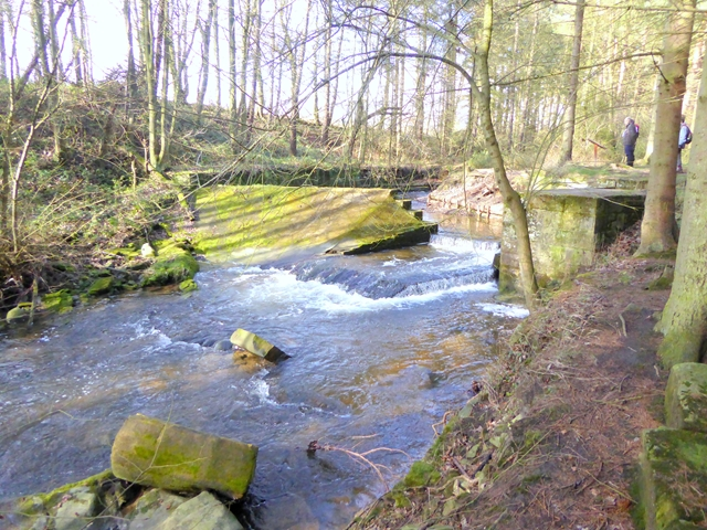 Old weir on Meggie's Dene Burn