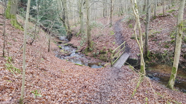 Footbridge over Threepwood Burn in Dinnetley Wood