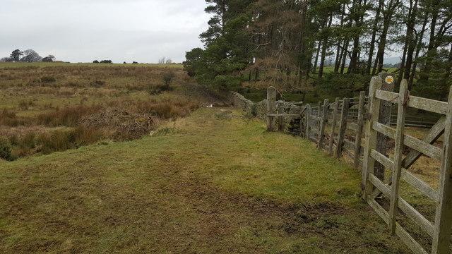 Footpath across farmland west of Threepwood