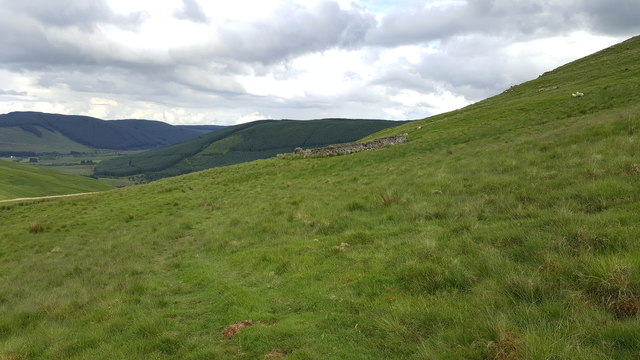 Sheepfold on east side of Craig Hill
